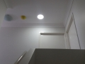 Led Skylight
